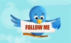 Twitter bird cartoon